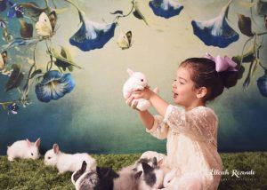 Quer dar um mini coelho no Dia das Crianças? Confira nossas dicas... 9
